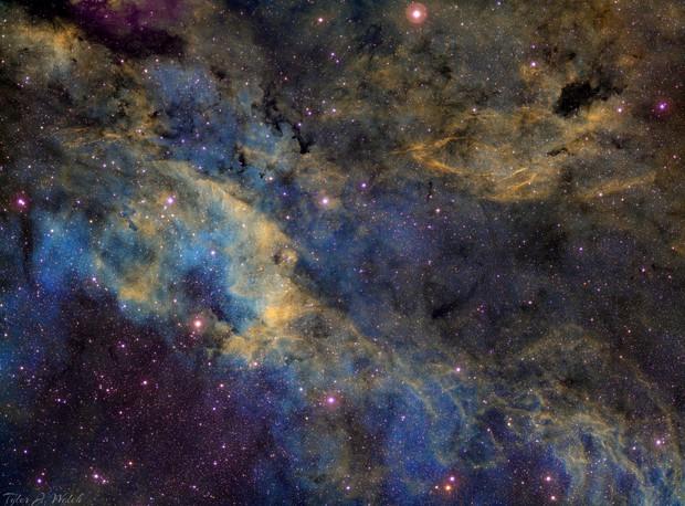 Cygnus Region (IC 1318)