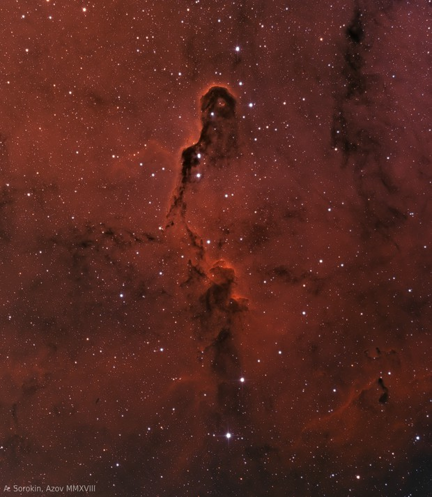 IC 1396A, Elephant's Trunk nebula, bicolor