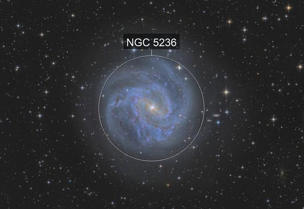 M83 / NGC 5236 - Southern Pinwheel Galaxy
