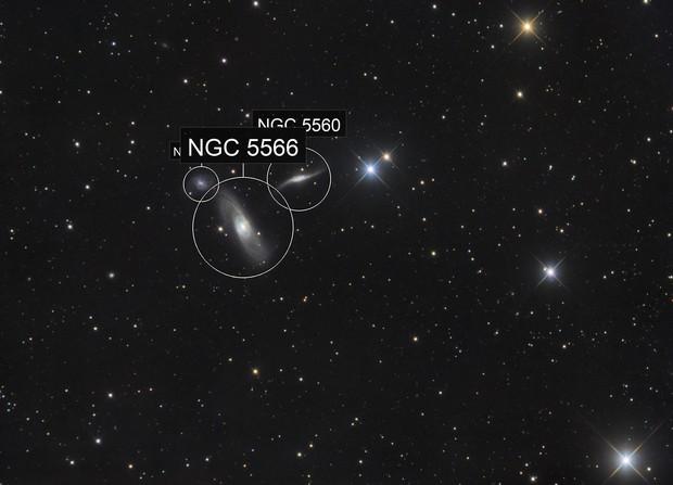 Arp 286 / NGC 5566, 5560, 5569