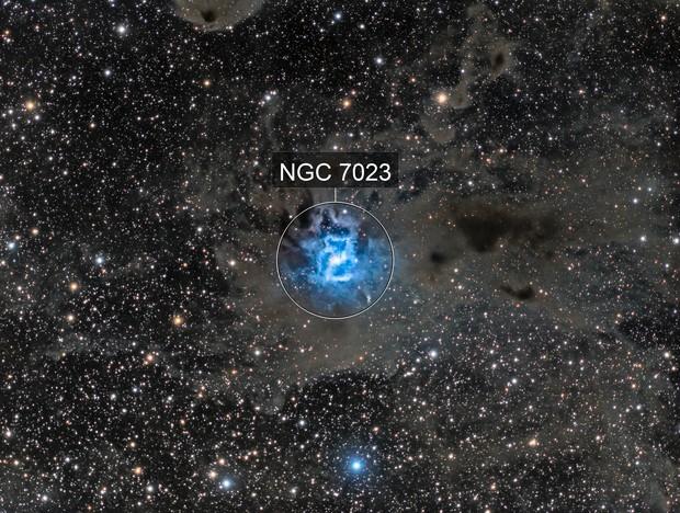 Iris Nebula with Surrounding Dust