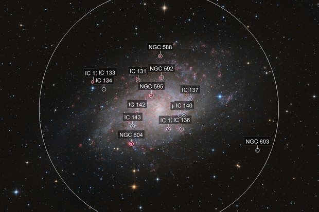 First light - Triangulum Galaxy with D810a