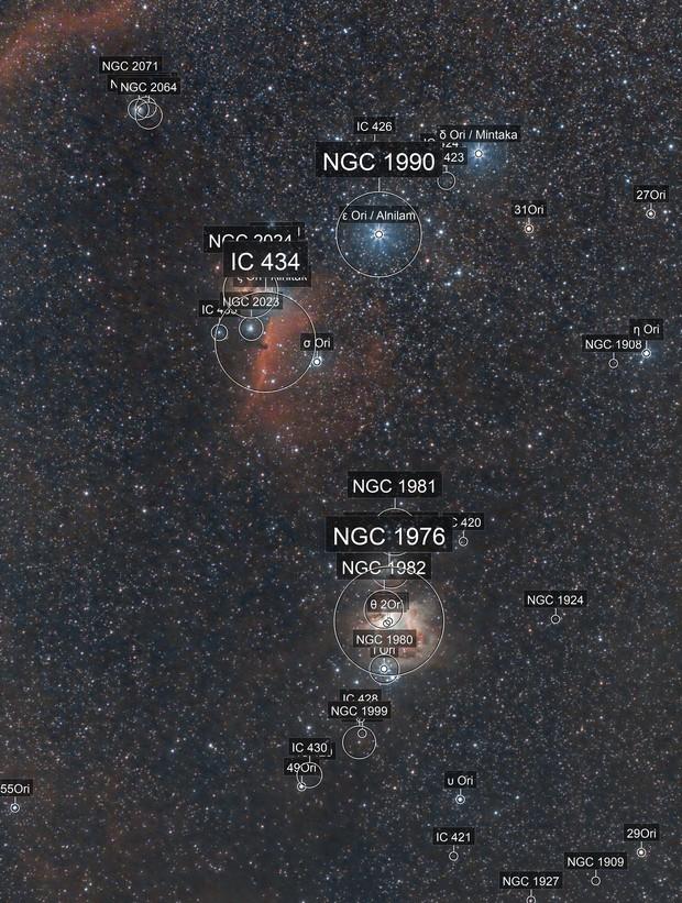 Nébuleuses de la constellation d'Orion (grand champ)