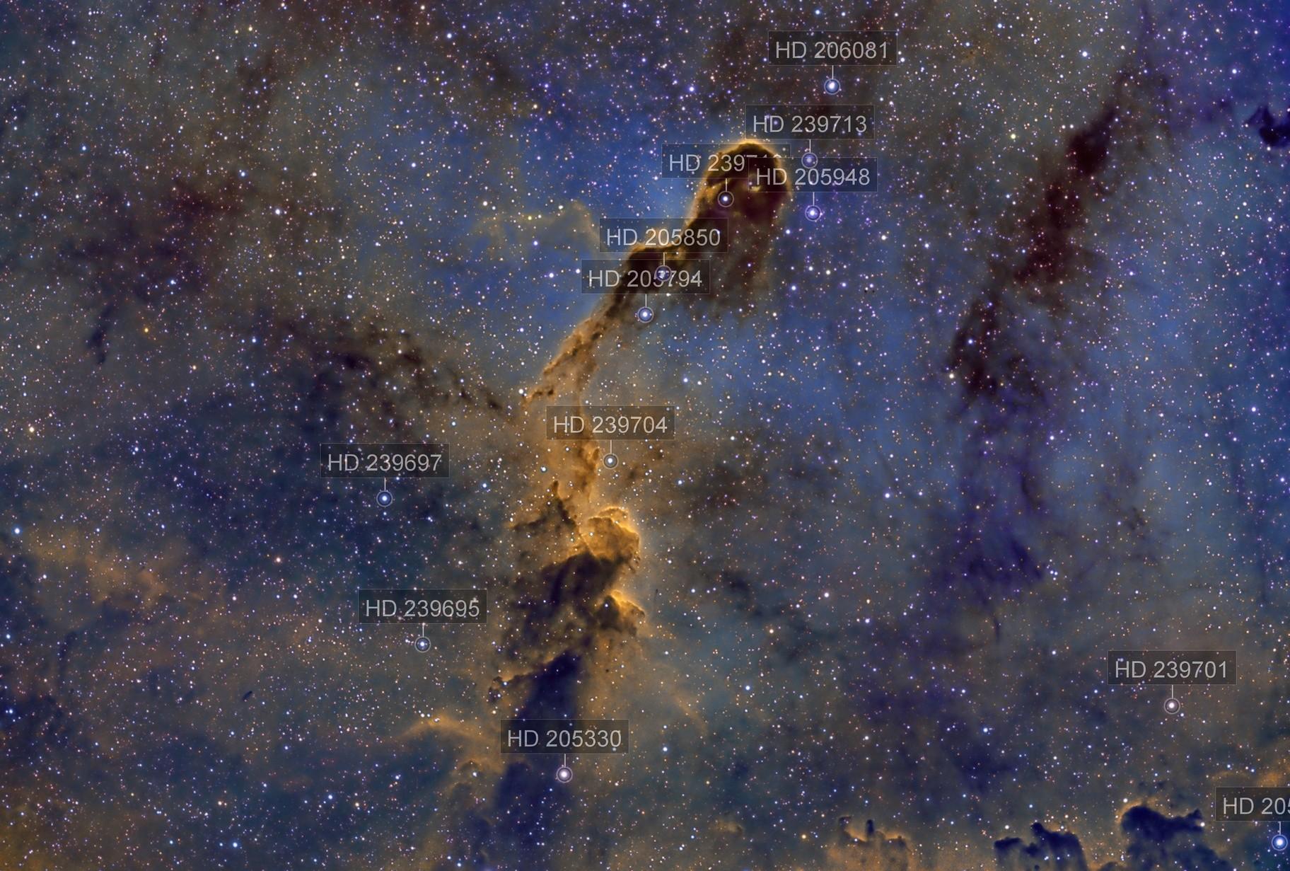 IC 1396 - The Elephant Trunk Nebula