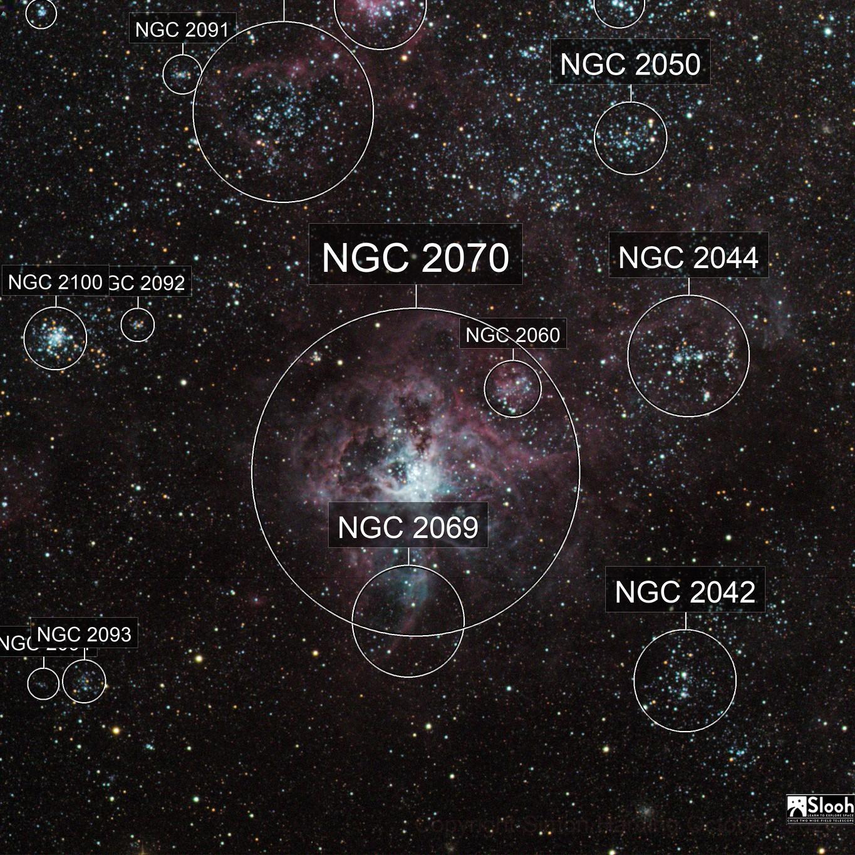 NGC2070(Tarantula Nebula)