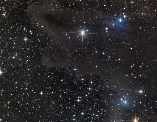 Dark shark nebula , VdB 150