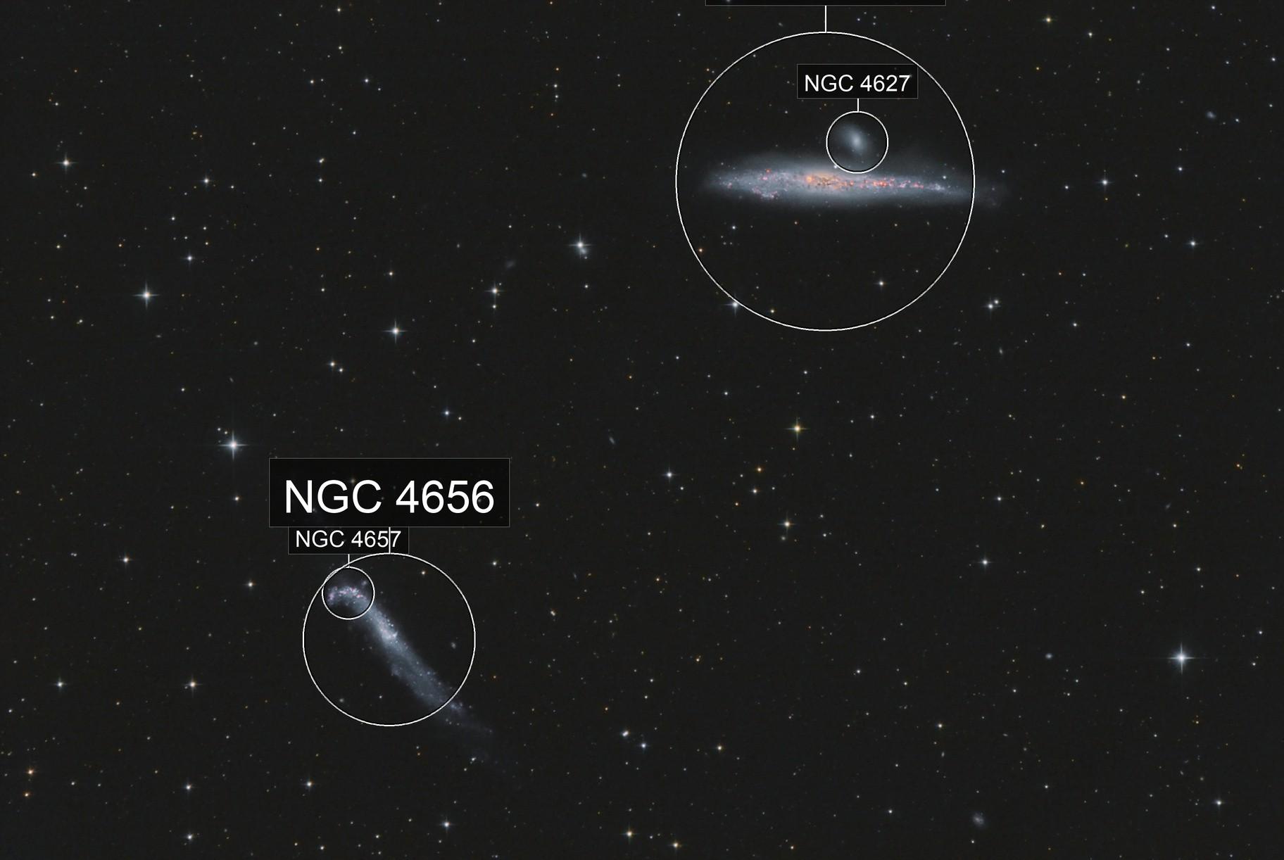 NGC 4136 , baleine