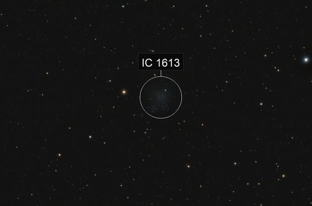 IC1613