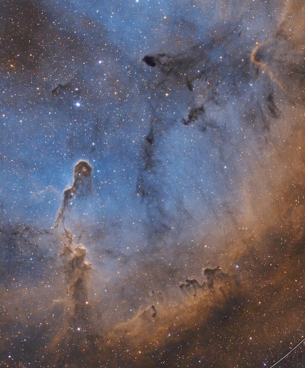 IC 1396 - Wide field