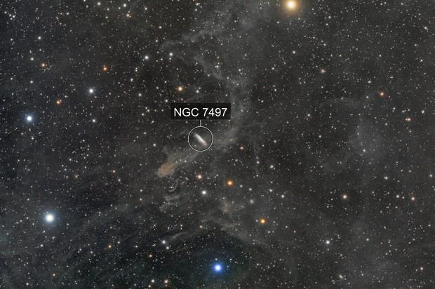 NGC7497 and molecular clouds