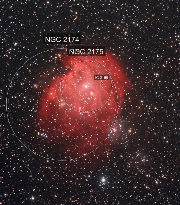 Ngc 2174 - La nebulosa Testa di Scimmia