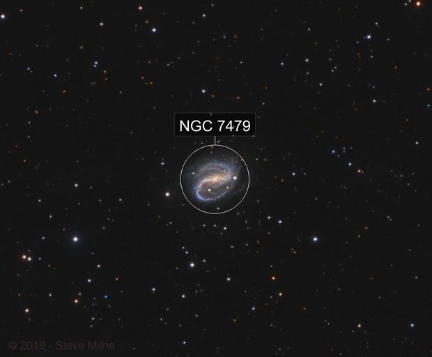 NGC 7479 in Pegasus