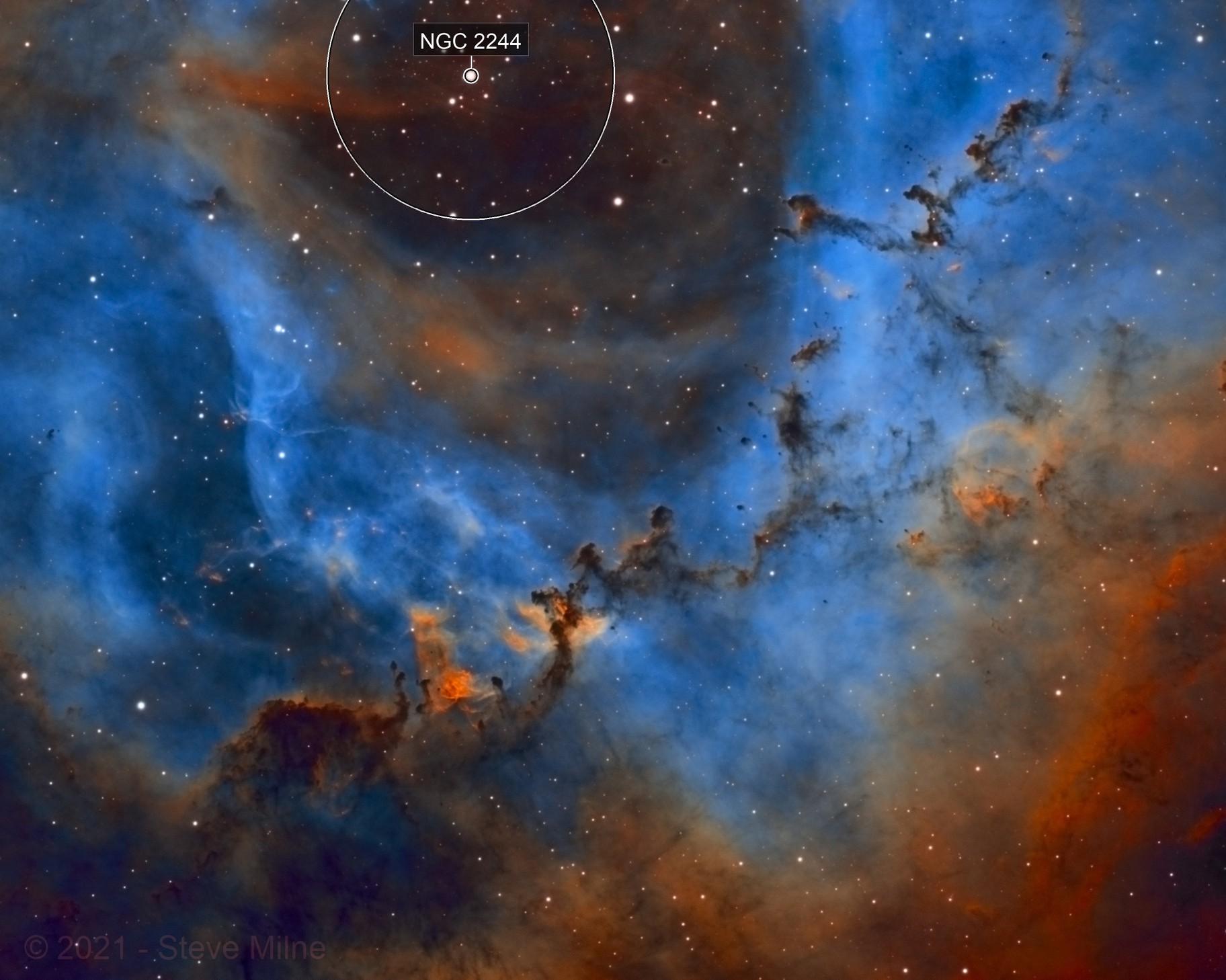 Bok Globules in the Rosette Nebula