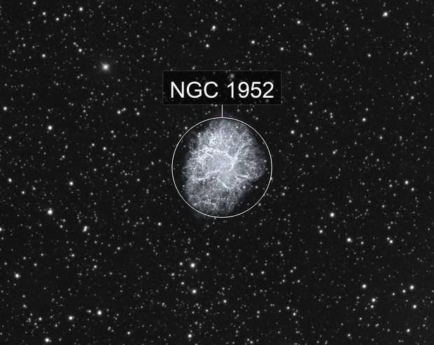 The Crab Nebula in HA