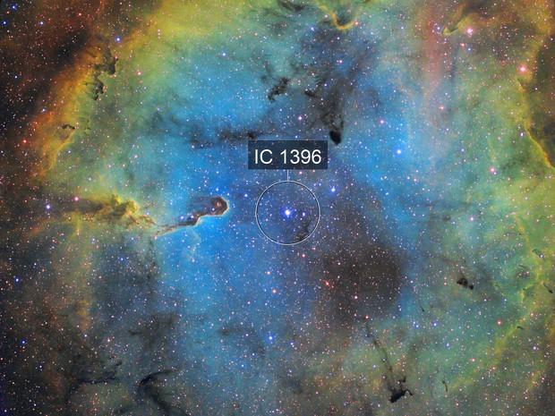 IC1396 SHO