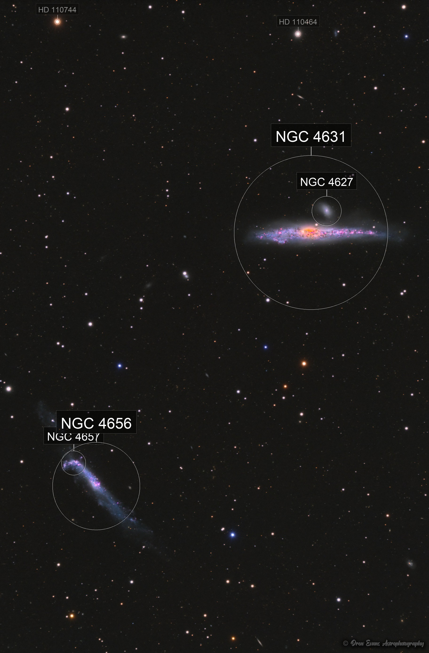 The Hockey Stick (NGC 4656) and Whale Galaxy (NGC 4631)