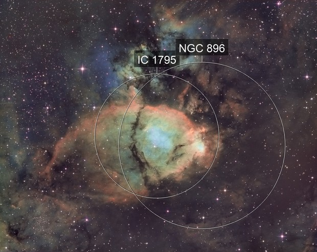 IC1795 SHO - Fish head