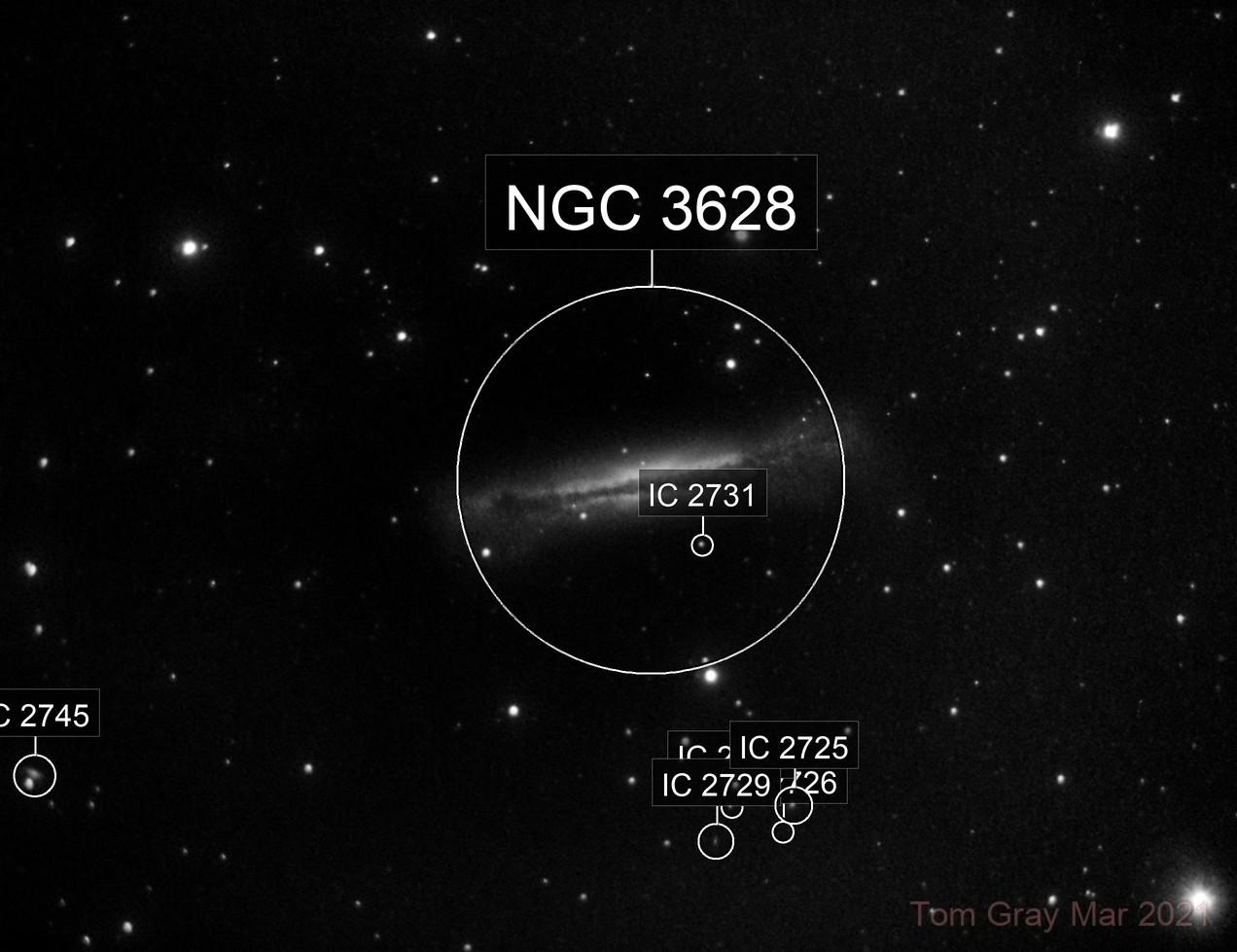 NGC 3628 - smiling, really.