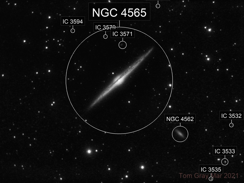 NGC 4565 - spring has sprung