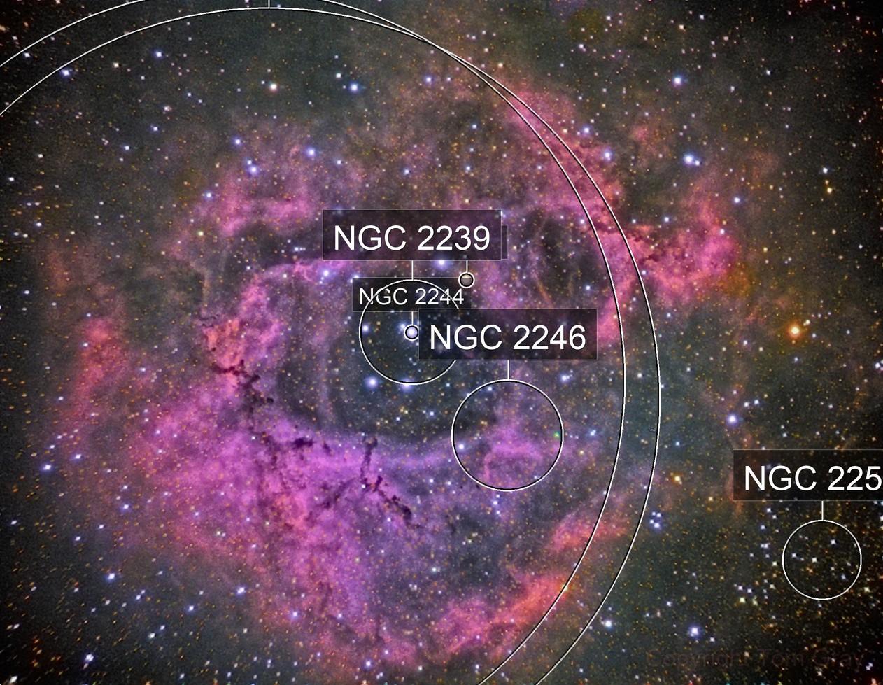 NGC 2244 - a Christmas Rose