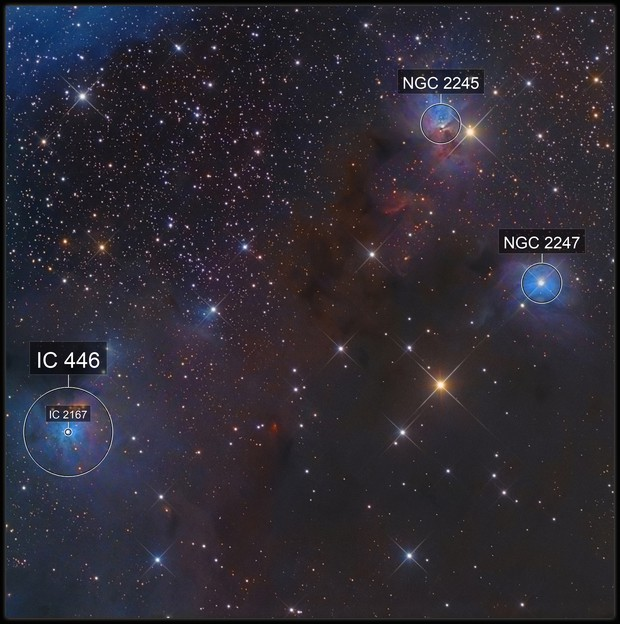 NGC 2247
