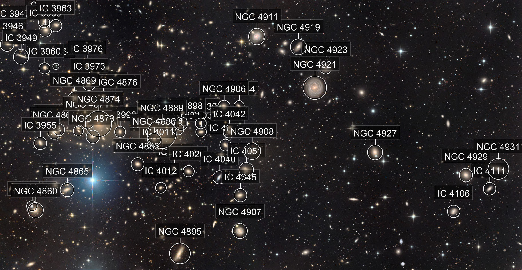The Coma Cluster