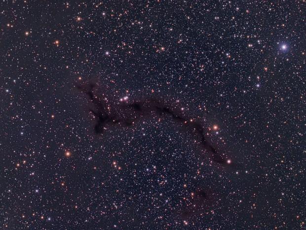 """B150 """"Seahorse"""" Dark Nebula"""