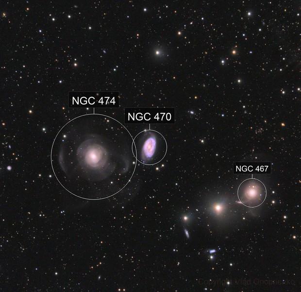 NGC 467, 470 and 474.  Intergalactic Star Streams.