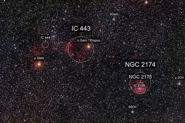 IC 443 + NGC 2174