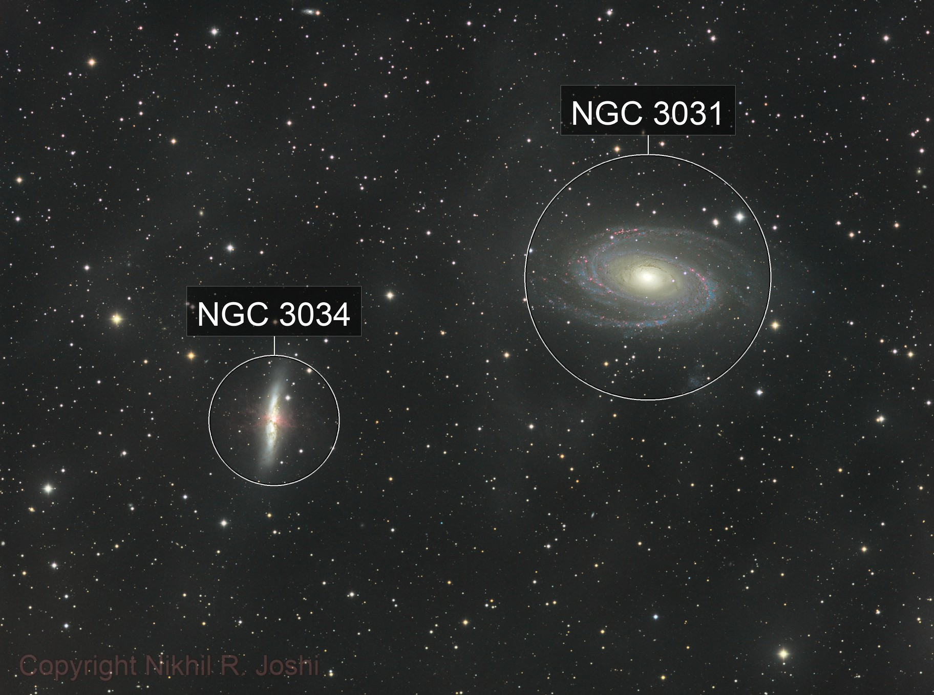 M81, M82, and associated IFN