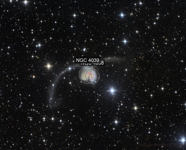 NGC 4038 Antennae Galaxies