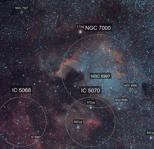 NGC 7000 Complex