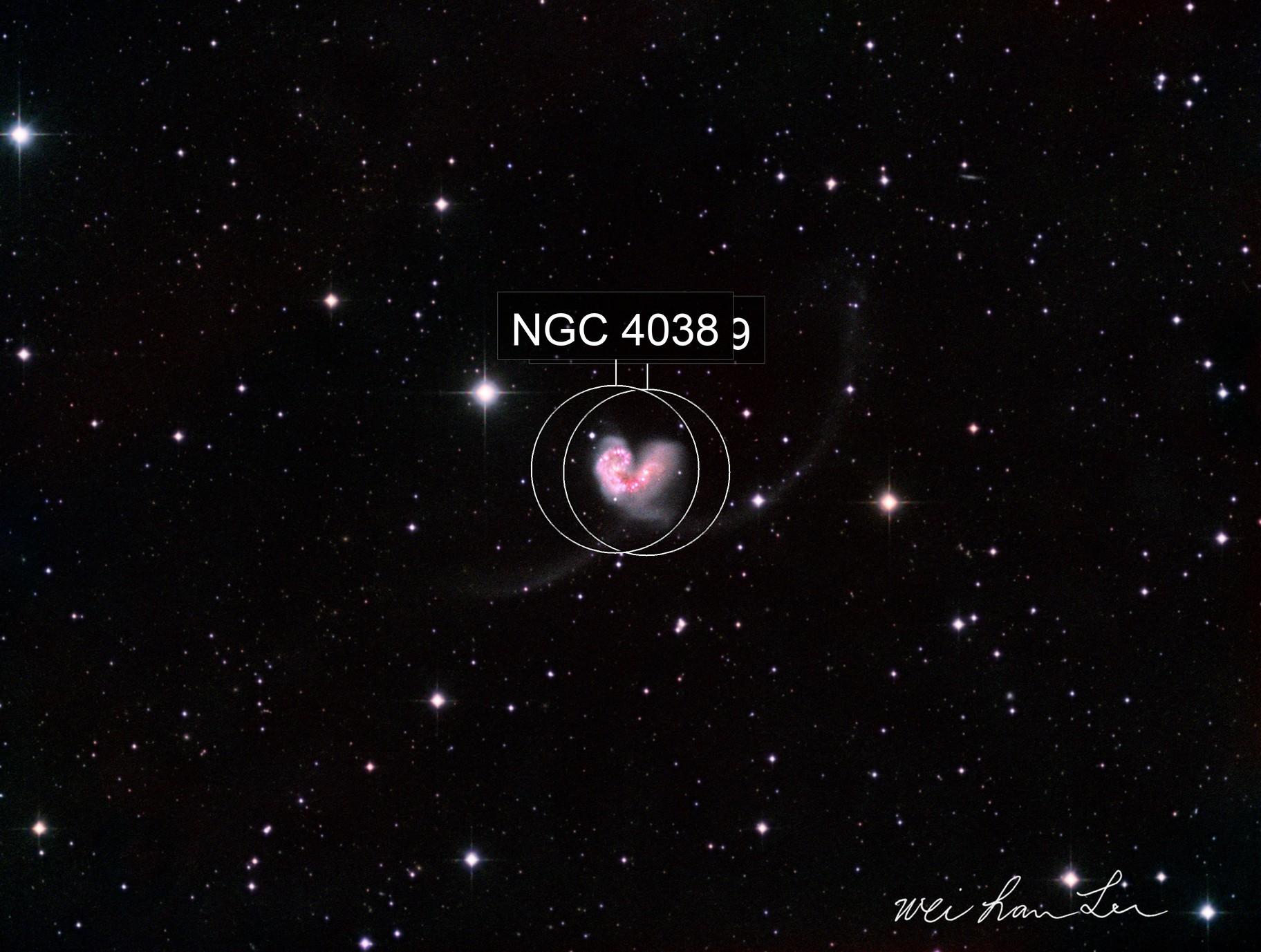 NGC4038-NGC4039 Antennae Galaxies
