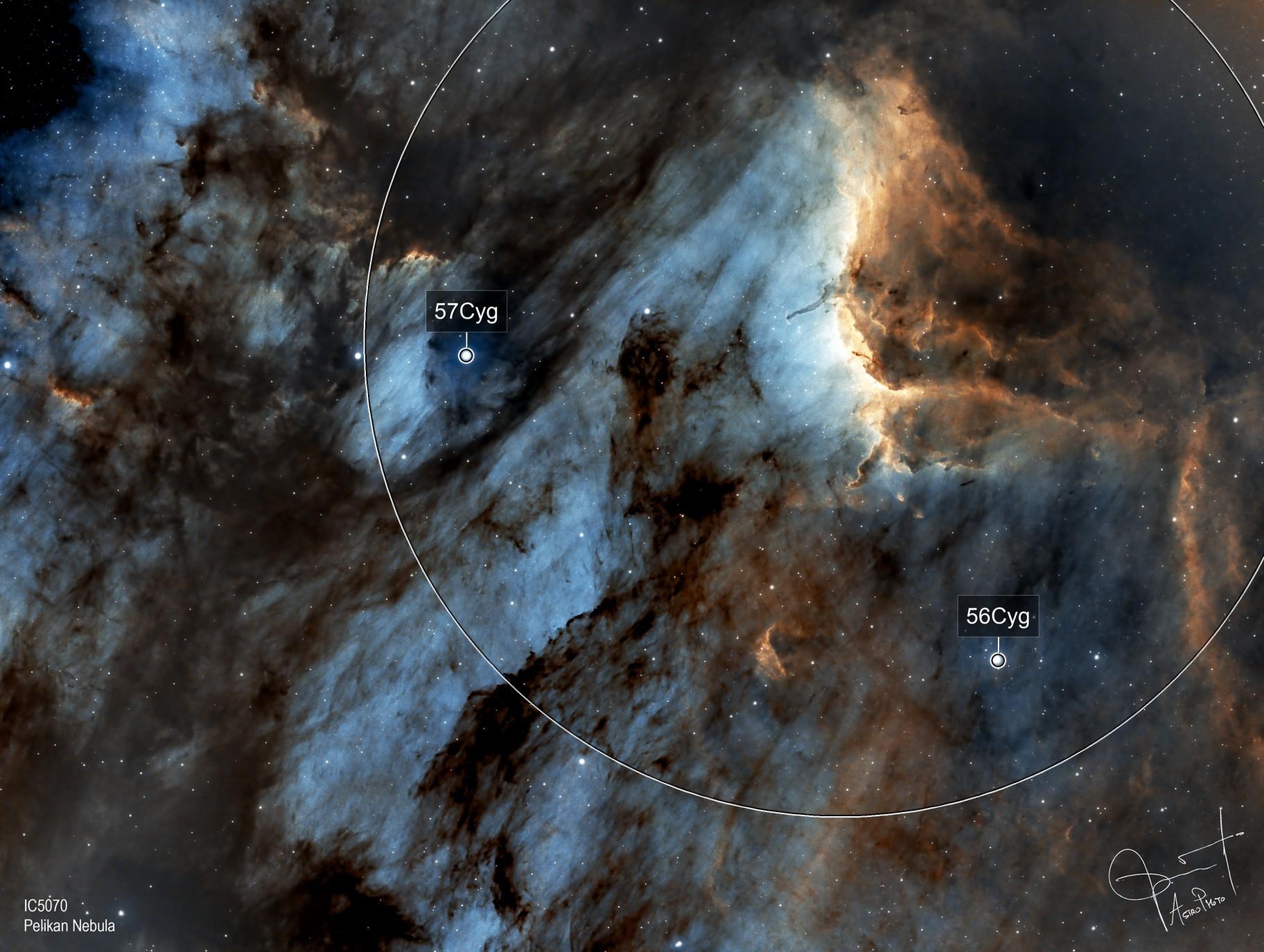 Pelikan Nebula in SHO