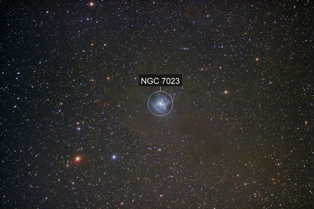 NGC 7023 - Irisnebel