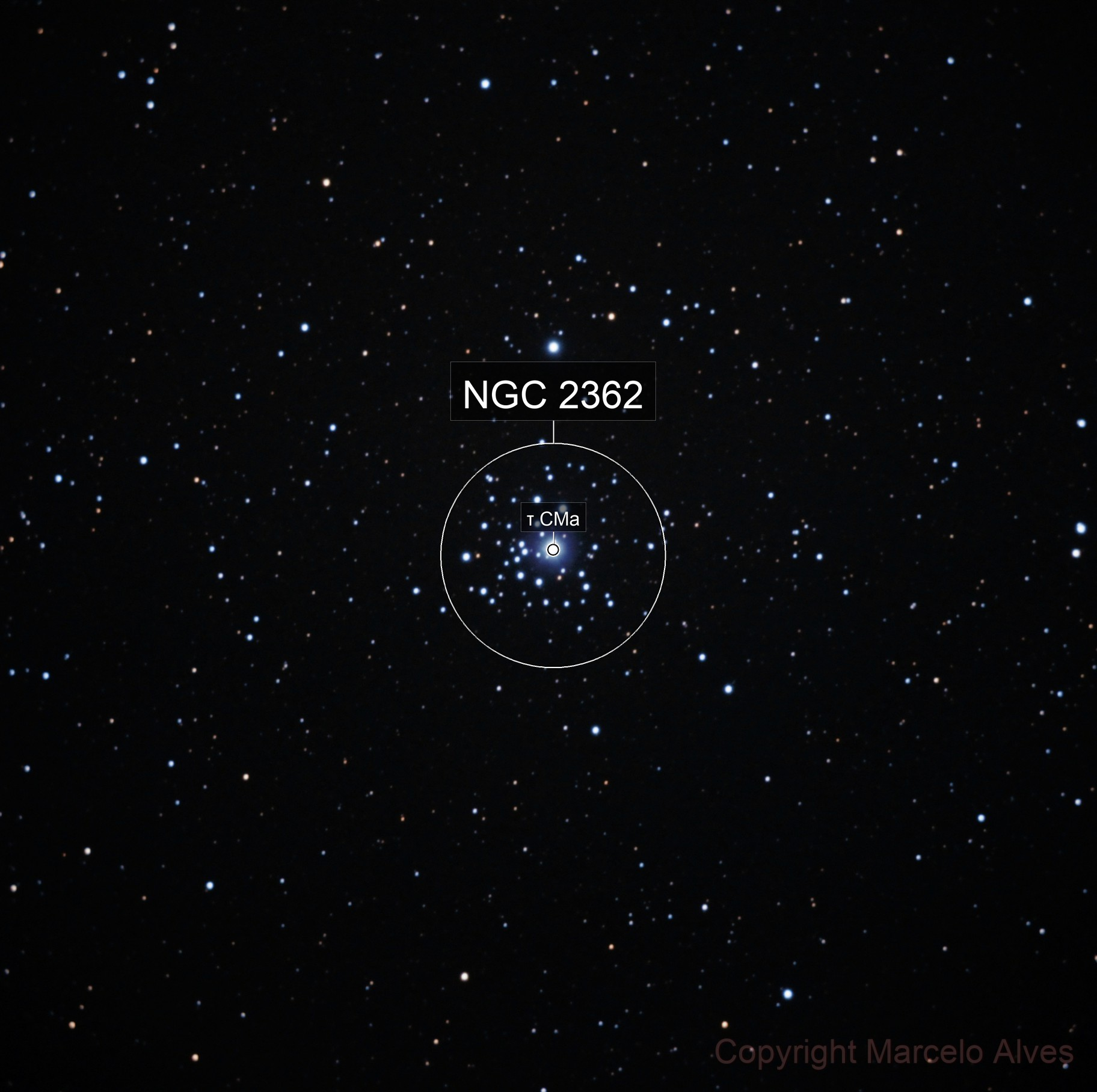 NGC2362 - Tau Canis Majoris Cluster