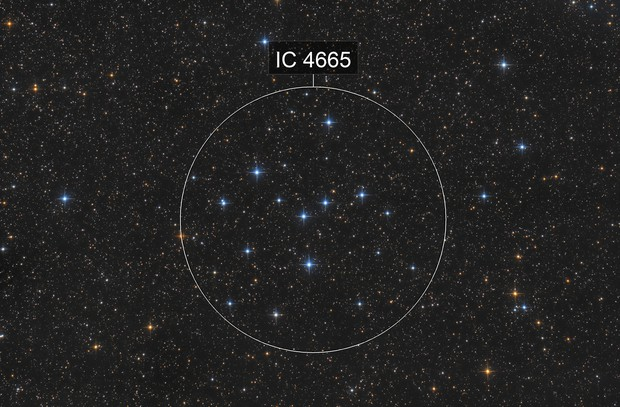IC 4665 - The Summer Beehive