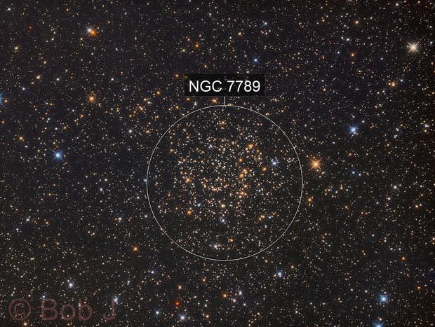 NGC 7789- Caroline's Rose