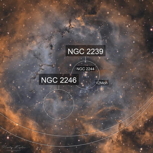 Rosette Nebula Narrowband (alt)