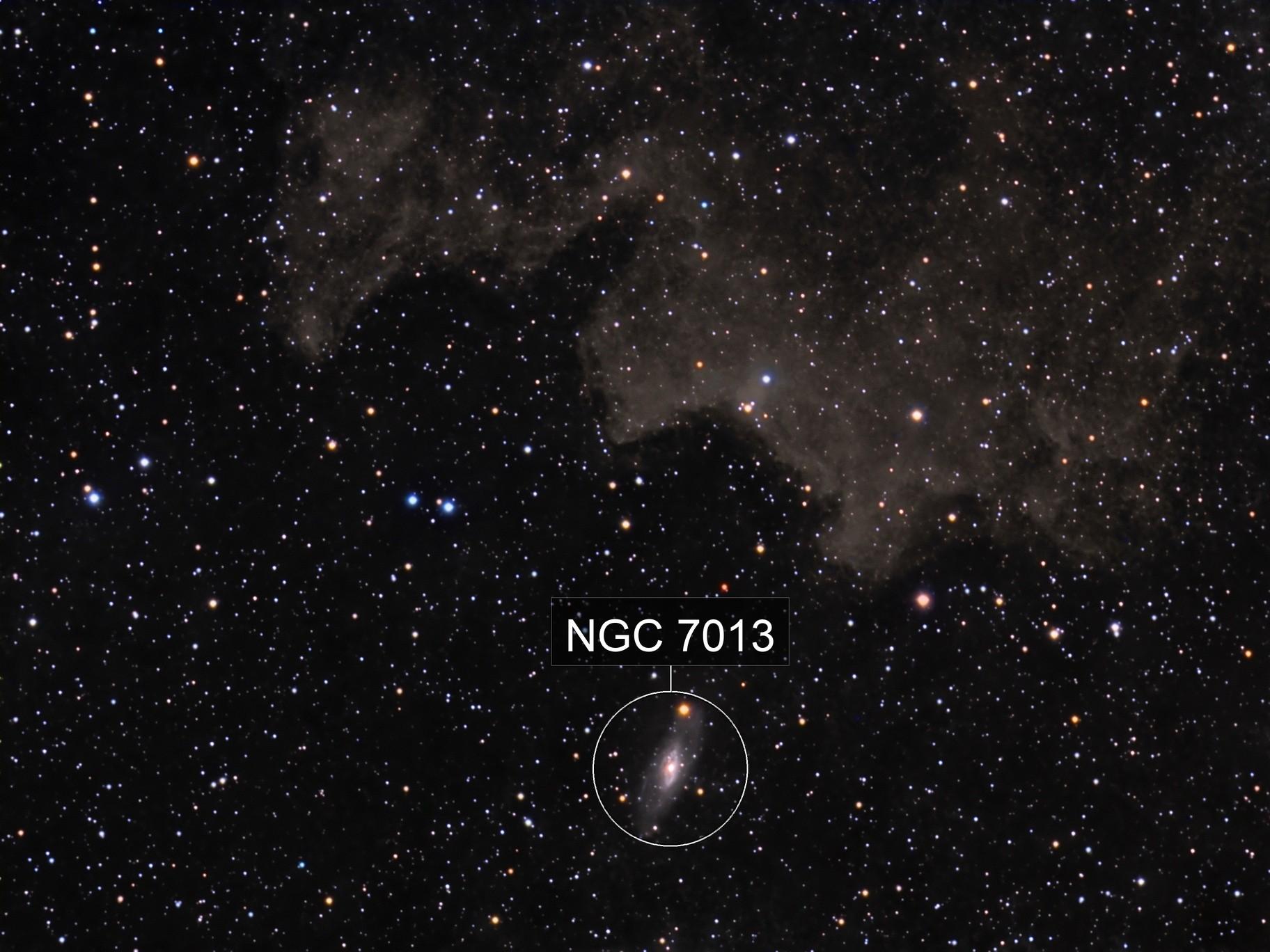 NGC 7013 in Cygnus