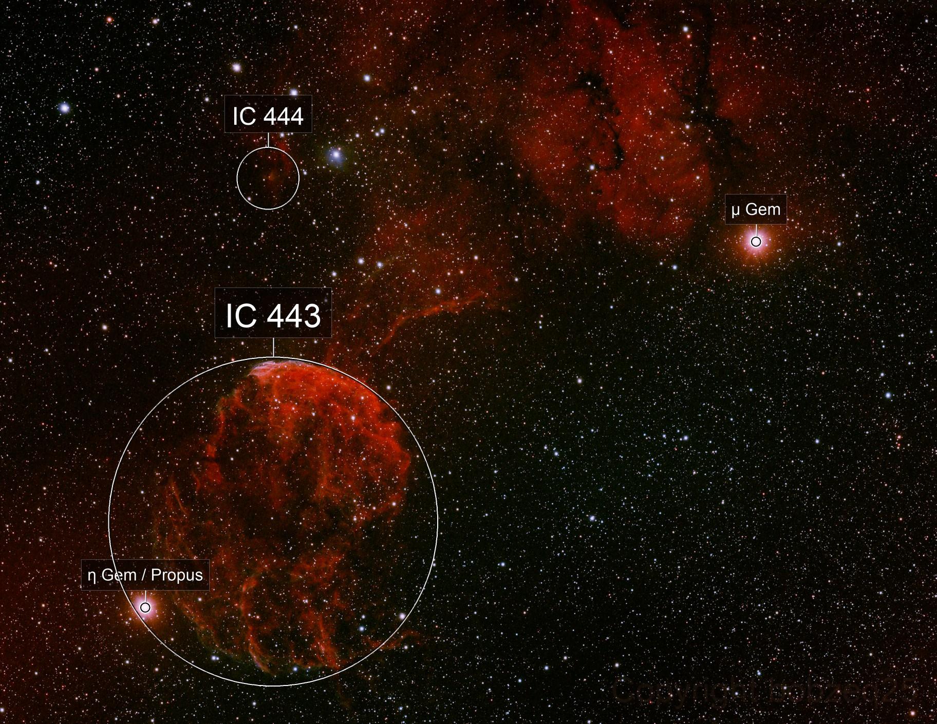 Jellyfish Nebula plus SH2-249 plus IC444