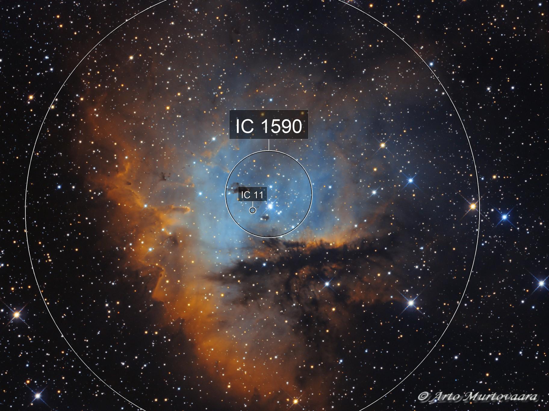 NGC 281 SHO, RGB stars