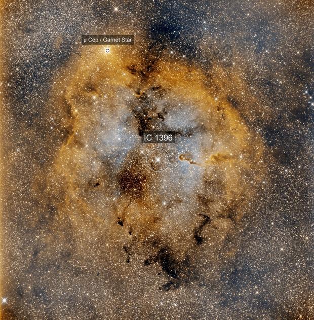 IC_1396