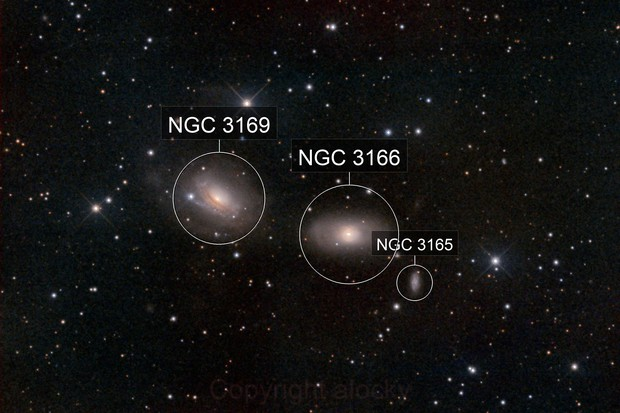 ngc3166 and friends