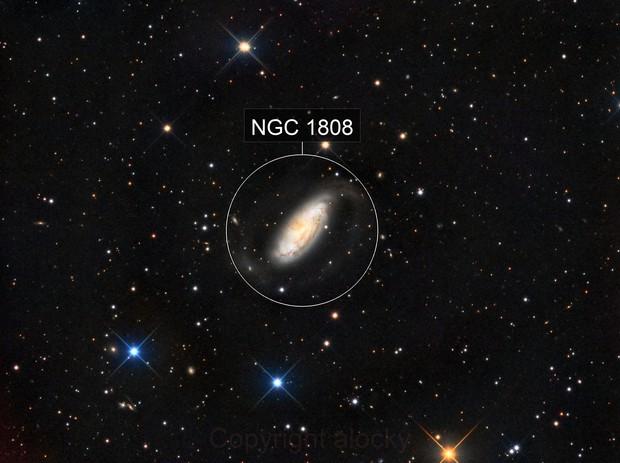 NGC1808