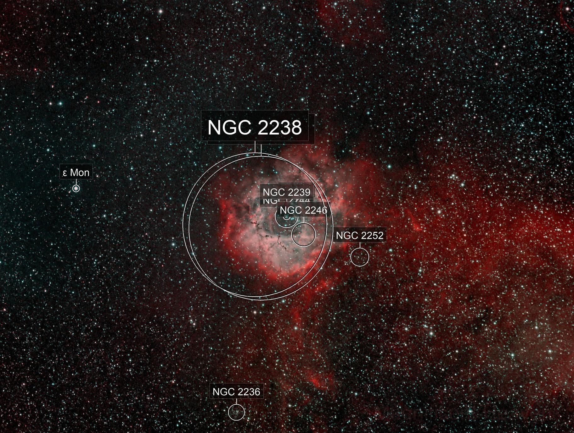 Bicolor Image of the Rosette Nebula