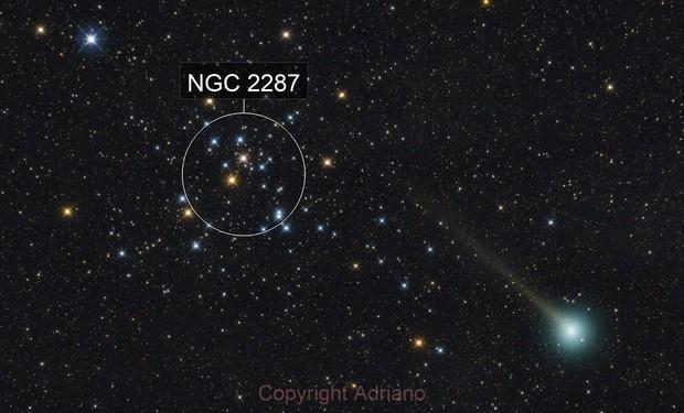 Comet C/2019 U6 and M41.