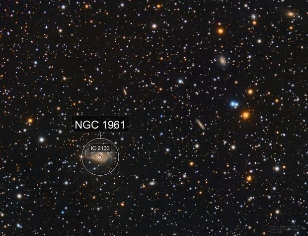 NGC 1961 Spiral Galaxy