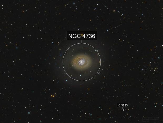 M94 Croc's Eye Galaxy