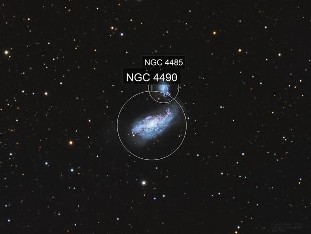 NGC4490 Cocoon Galaxy